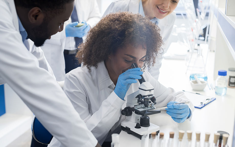 A group of interns works in a laboratory.
